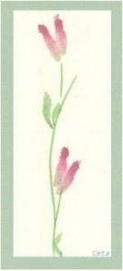herkkiä-kukkia